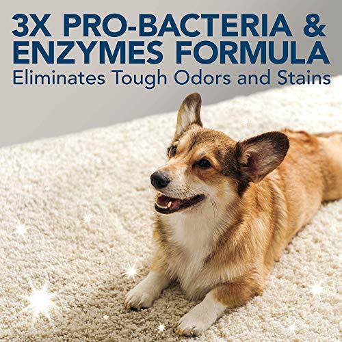 10137-12p Simple Solution removedor de manchas y olores para mascotas Extreme, 945 ml
