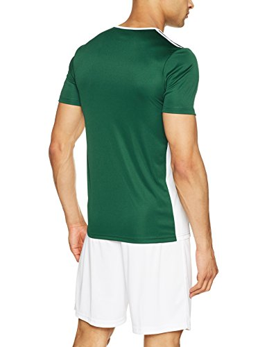 adidas Entrada 18 JSY T-Shirt, Hombre, Collegiate Green/White, L