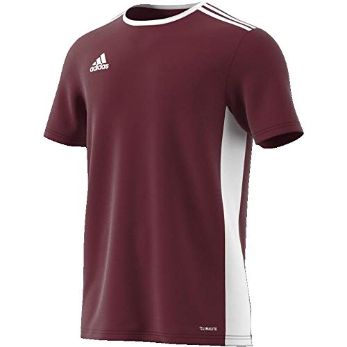 adidas Entrada 18 JSY T-Shirt, Hombre, Maroon/White, L
