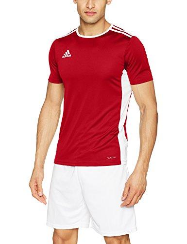 adidas Entrada 20 Camiseta de Fútbol para Hombre de Cuello Redondo en Contraste, Rojo (Power Red/White), L