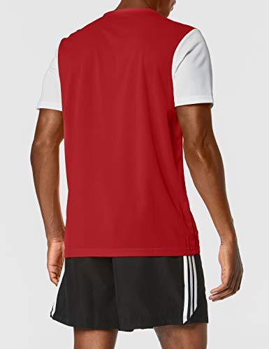adidas ESTRO 19 JSY Camiseta de Manga Corta, Niños, Power Red, M