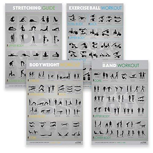 Alpine Fitness Ejercicio & Fitness Posters | Amplio gimnasio laminado planificador cartas para entrenamientos de gran