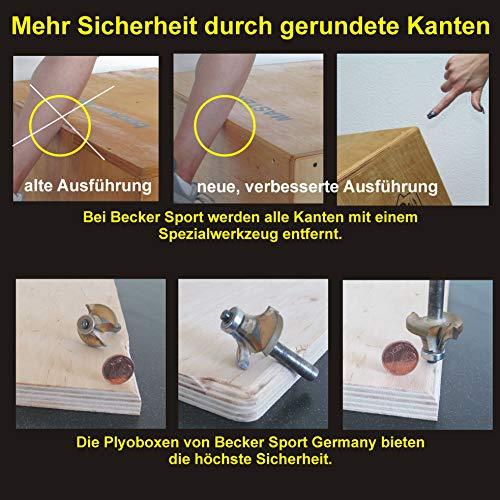 Becker-Sport Germany Master Box Standard (BSG 28941), extremadamente estable y barnizado