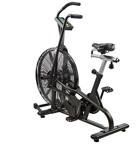 Bicicleta estática Lifecore Fitness Assault