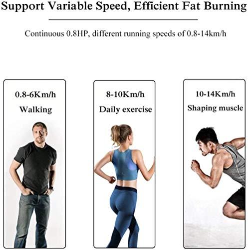 Cintas de correr profesional cinta de correr, caminadora eléctrica Incline la máquina corriente, pérdida de peso ejercicio de la aptitud del equipo, pantalla LCD y silencioso destinados, hasta 120kg