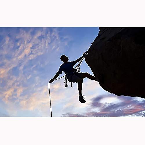 Cuerda de Escalada 9.5MM al Aire Libre Cuerda de Escalada Cuerda de Escape Diámetro del Cuerpo de Bomberos de excursión Subir la Cuerda Auxiliar (Color : Orange, Size : 9.5mm x 30m)