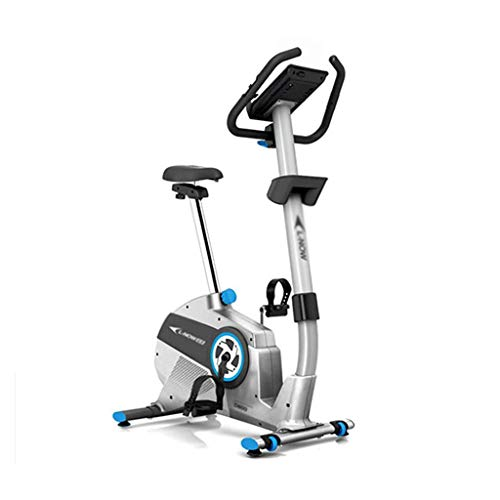 DFKDGL Exercise Bike Spinning Bicycle Mute Home Fitness Equipment Indoor Sports Bike for-Home-Gym-Workout-Routines-Training