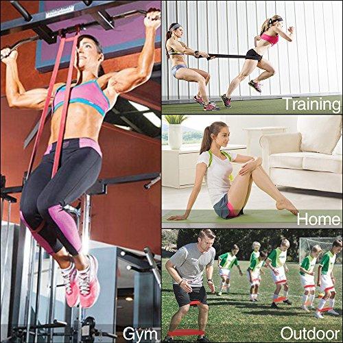 Eocusun Bandas Elásticas, Bandas de Resistencia [ Individualmente y en un Set Barato ] Fitness Bandas para Yoga, Crossfit, Entrenamiento de Fuerza, Pilates, Fisioterapia