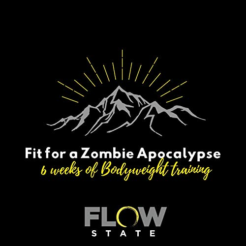 Fit for a Zombie Apocalypse - 6 weeks of bodyweight training and exercise: brought to you by FlowState - home of CrossFit Tewkesbury (English Edition)