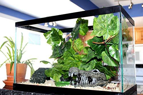 GenRev 2,3 Metros (7,5 pie) Planta Trepadora para Terrario de Reptiles con Ventosas para Jaulas de Dragón Barbudo, Gecko, Lagarto o Serpiente-Incluye Plato Alimentador para Agua