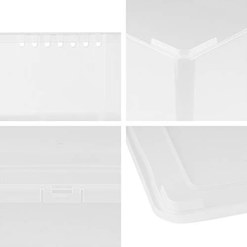 Grizzly 12 x Caja de Almacenaje con Tapa de 5 L - Cajón de Plástico Transparente Apilable - Caja Multiusos Organizador de Armarios para Ordenación de Ropa
