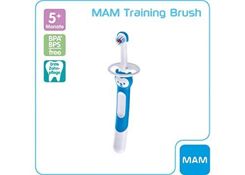 MAM Training Brush, Baby - Cepillo de dientes con mango largo para sostener juntos, cepillo de dientes para niños para suave limpieza dental, a partir de 5 meses, color azul