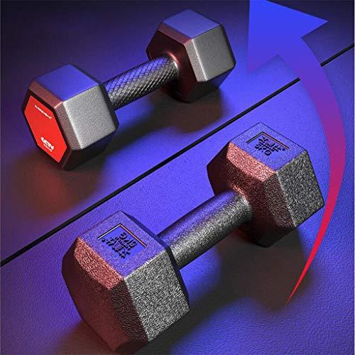 Mancuerna Hexágono Home Fitness Equipment Accesorios Salud Deportes Pesas Mancuernas para Muscular Altere Musculatio Peso Barras Discos Aptitud Bíceps para La Formación,2kg*2