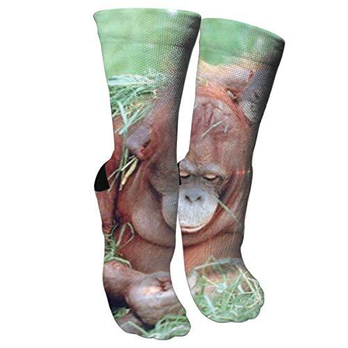 Nifdhkw Orangutan and Baby Wildlife Animal Nature Fashion Stylish Knee High Socks for Women and Men-Fitness Novelty Crew Athletic Socks Comfortable Knee High Sock