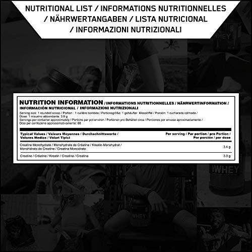 Optimum Nutrition ON Creatina Monohidrato Micronizada, Creatine en Polvo, Suplementos Deportivos para Musculacion, Sin Sabor, 88 Porciones, 317g