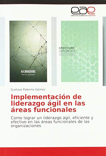 Palermo Gómez, G: Implementación de liderazgo ágil en las ár
