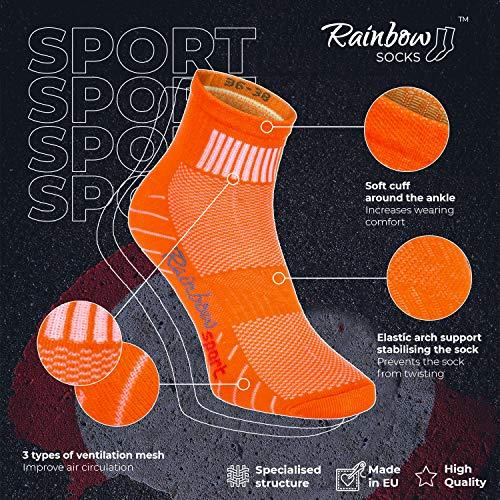Rainbow Socks - Hombre Mujer Calcetines Deporte Colores de Algodón - 12 Pares - Multicolor - Talla 39-41