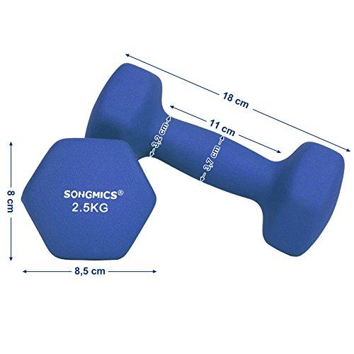 SONGMICS Juego de 2 Mancuernas para Gimnasio y Entrenamiento 2 x 2,5 kg SYL65BU