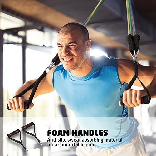 Terra Hiker Bandas Elasticas Resistencia, para Fitness/Gimnasio, hasta 68 kg (150lbs), Incluye 5 Bandas de Tubo, con Manija/Anclaje de Puerta