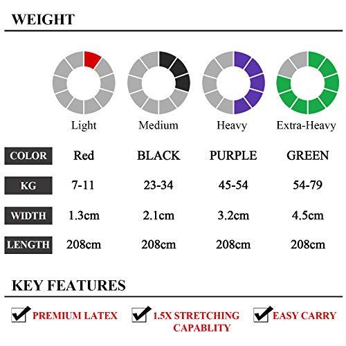 TheFitLife Bandas Elasticas Fitness Musculacion - Cintas Elásticas de Resistencia Para pull-ups Asistidos, Cross-training, Dominadas, Yoga, Pilates, Fisioterapia, Con E-Guía de Ejercicios