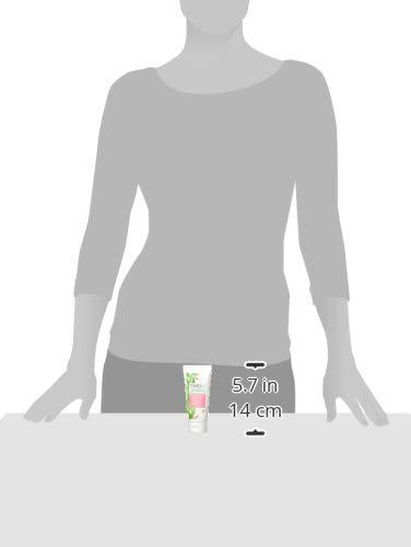 Timely - Crema de manos hidratante y regeneradora con aloe, 100 ml