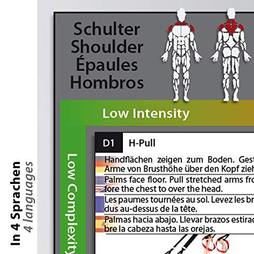 Variosling® Gran Póster/Cartel de Entrenamiento en Suspensión con 54 Ejercicios   Plan/Rutina/instrucción del Entrenamiento Funcional/Muscular   Dos Piezas (anverso y Dorso), tamaño A1