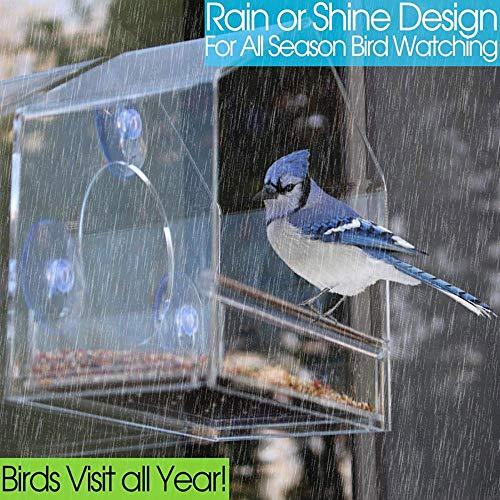 WSXD Alimentador de pájaros, semilla Grande de acrílico Transparente Ventana de la conversación del alimentador del pájaro de la Bandeja extraíble Fuertes ventosas y Birdfeeders al Aire Libre for Las